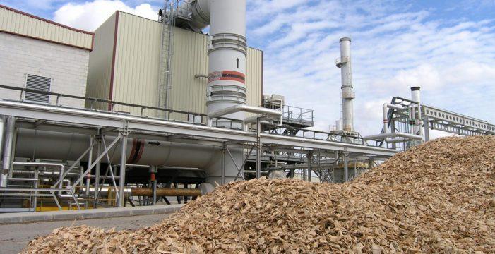 Fasnia ya tiene suelo para el primer centro de biomasa de Canarias