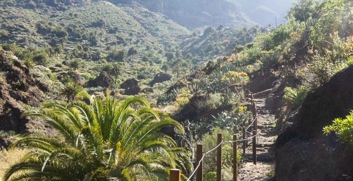El acceso al barranco de Masca quedará limitado a grupos de 25 personas