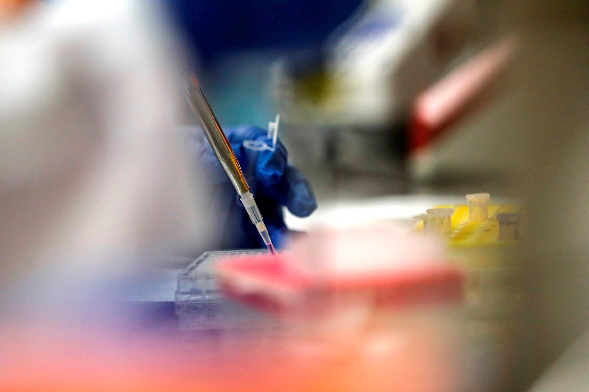 Detalle del trabajo en un laboratorio