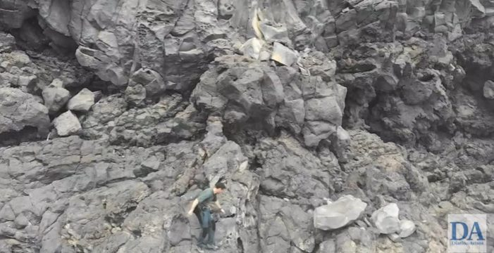 Encuentran los cuerpos sin vida de 12 perros en el fondo de un barranco de Tenerife