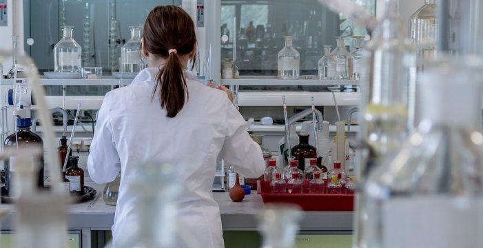 Golpe español al cáncer de páncreas: una nueva técnica permite tratarlo con inmunoterapia