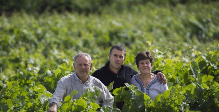 Canarius: el nuevo vino de Bodegas Tajinaste exclusivo para Lidl