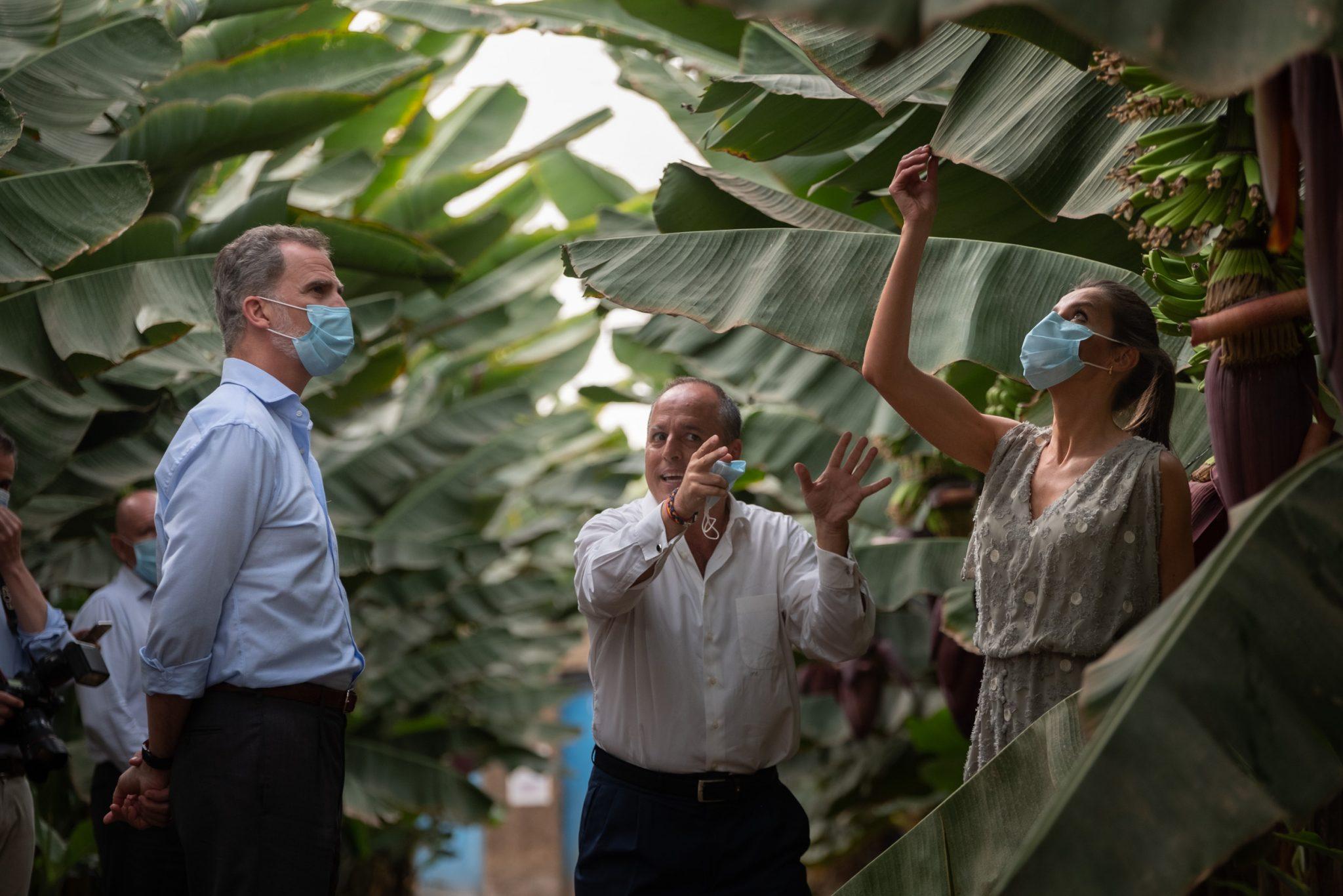 Los reyes Felipe VI y Letizia resaltaron ayer, en la finca El Confital en Granadilla de Abona, el valor de la agricultura canaria. FOTO: FRAN PALLERO