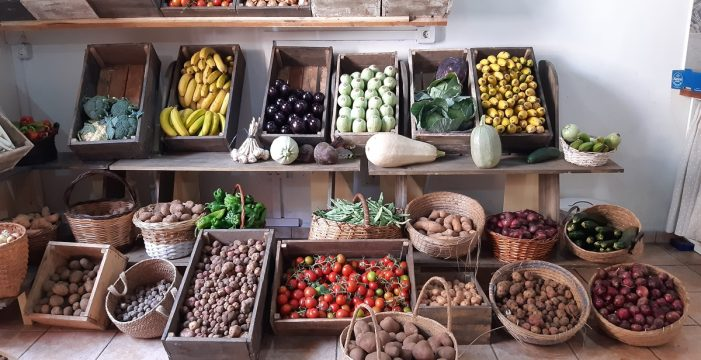 Sal y pimienta: La despensa del chef, apuesta de DIARIO DE AVISOS por el producto local
