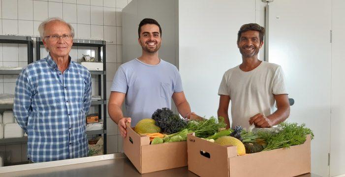 Las hortalizas de Guía de Isora que prefieren los chefs