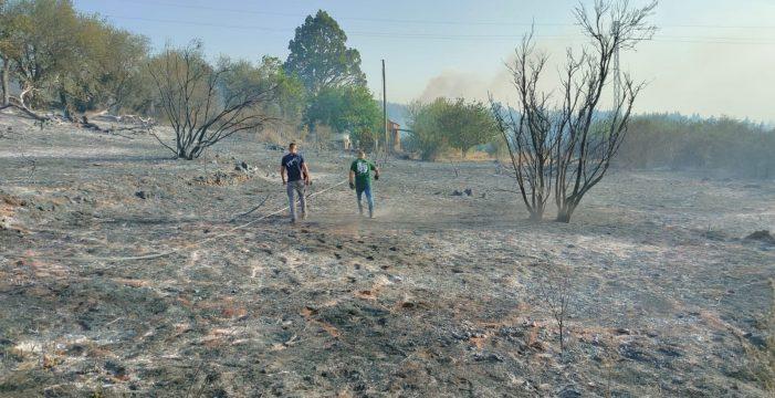 El Gobierno prevé compensar a los agricultores afectados por el incendio