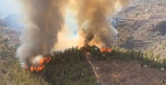 El Gobierno canario declara el Nivel 2 y asume la dirección del incendio de Tijarafe