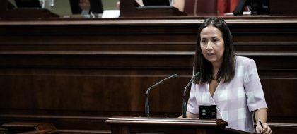 """Hernández (PP) cree que el Gobierno """"ningunea"""" a Los Llanos con la estación de guaguas"""