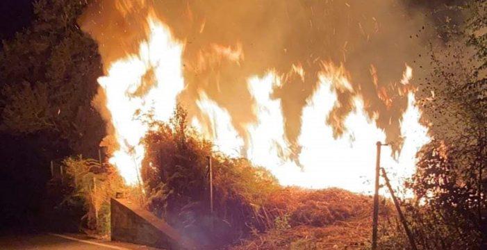 Controlan un conato de incendio en Icod de los Vinos