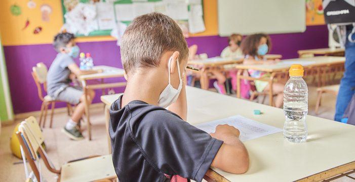 """ANPE Canarias califica de """"excelente"""" el trabajo de los docentes para detectar casos Covid"""