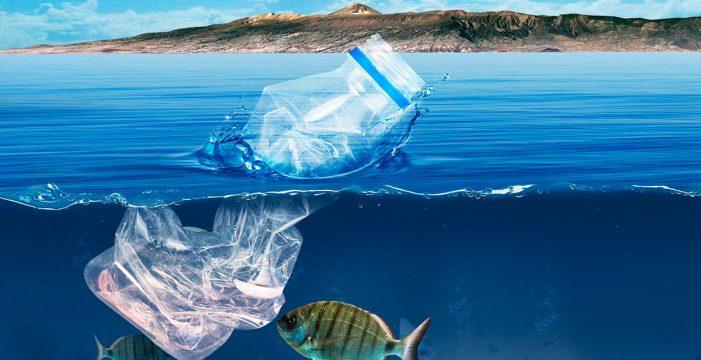 La Fundación DIARIO DE AVISOS presenta el proyecto sobre los microplásticos de mayor alcance realizado en Canarias