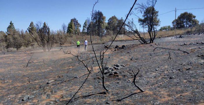 La superficie agraria útil afectada por el incendio es de 22 hectáreas