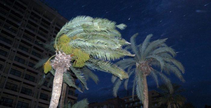 Aviso amarillo de la Aemet por los fuertes vientos que se esperan mañana en la provincia tinerfeña