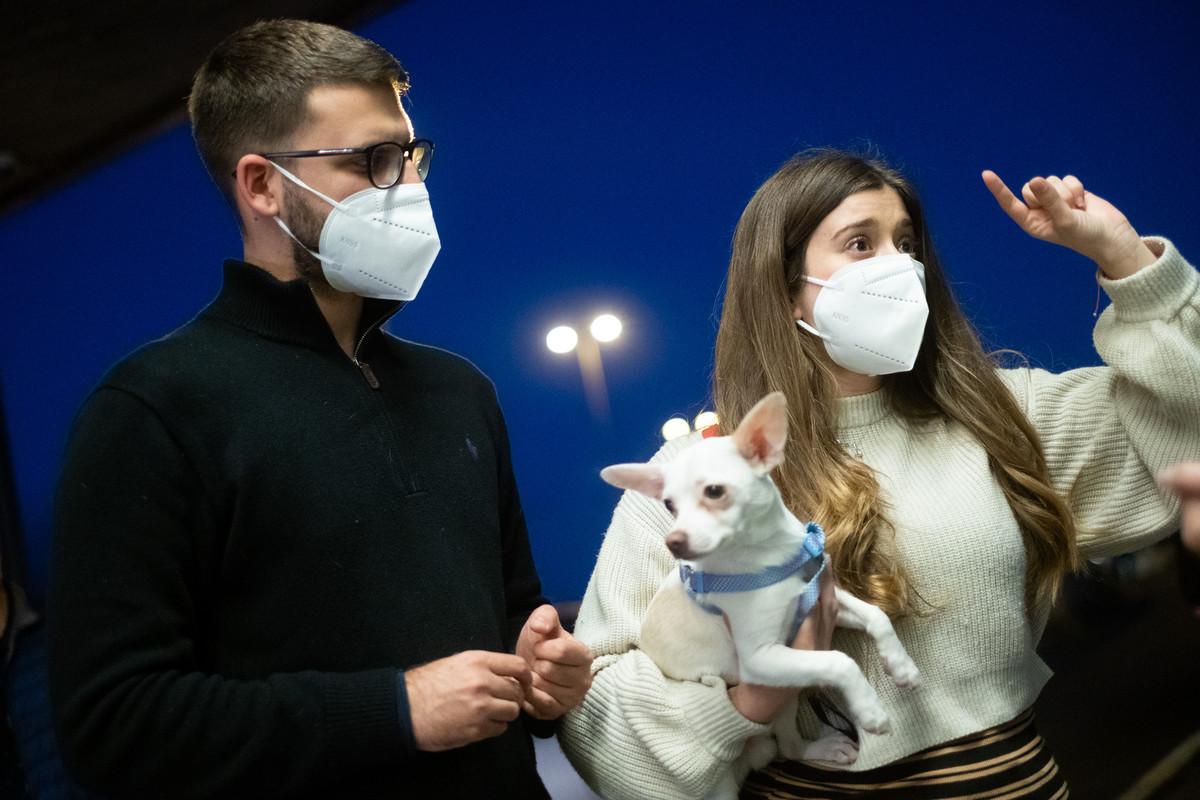 Imagen del aeropuerto Tenerife Norte ayer. Cristina, José Antonio y su perro Jimmy llegaron de Salamanca a pasar las Navidades con su familia. Fran Pallero