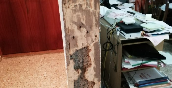 Navidad en pandemia y con termitas