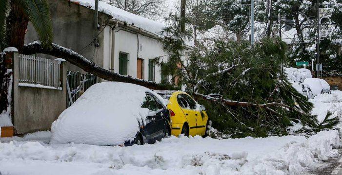 El Gobierno declara zona catastrófica los territorios afectados por 'Filomena'