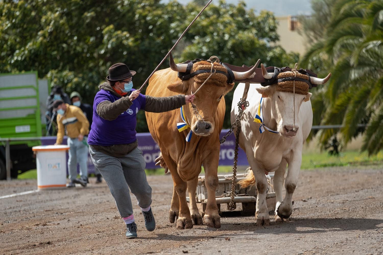 fp Casa del Ganadero Día de las Mujeres y los Deportes Autóctonos (2)