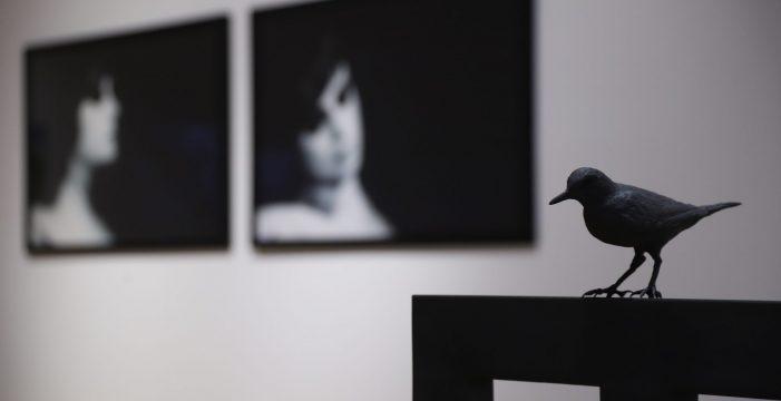 La exposición 'Gravedad y órbita' exhibe parte de la colección de TEA Tenerife Espacio de las Artes