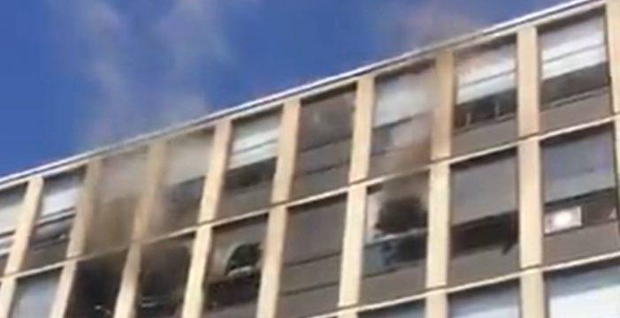 Un gato negro sobrevive tras saltar desde el quinto piso de un edificio en llamas: así fue el tenso momento